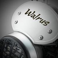 walrus64